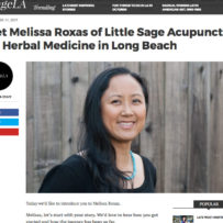 Little Sage featured on Voyage LA